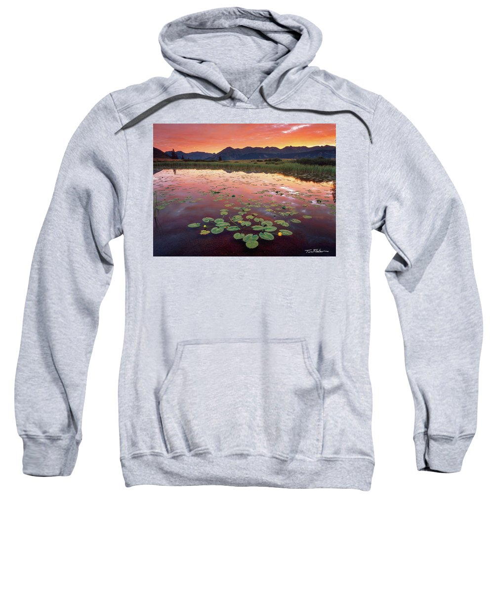 Backlighting Sweatshirt featuring the photograph Dark Turns To Light by Tim Fitzharris