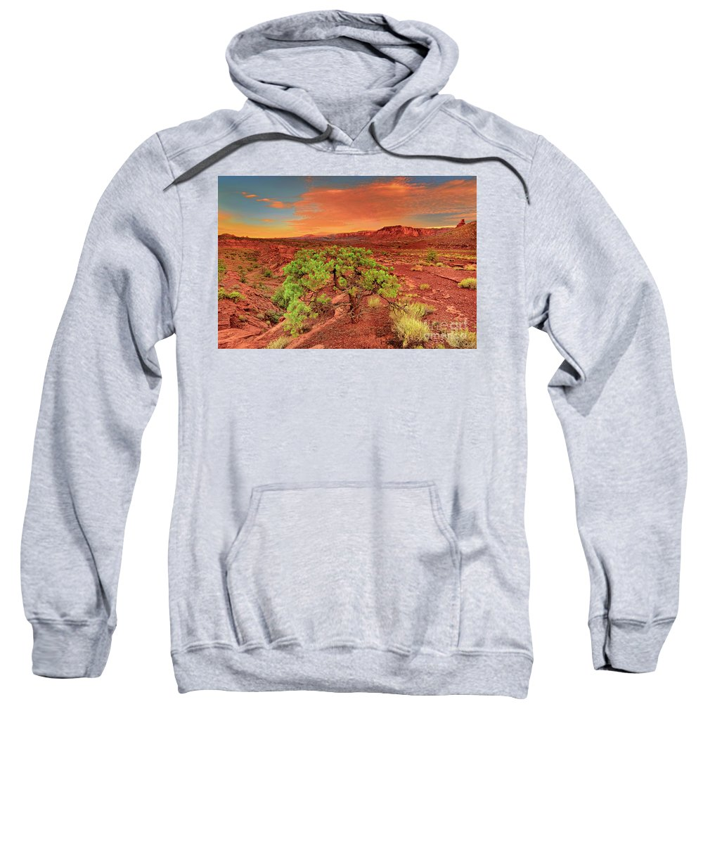 North America Sweatshirt featuring the photograph Dawn Light Capitol Reef National Park Utah by Dave Welling