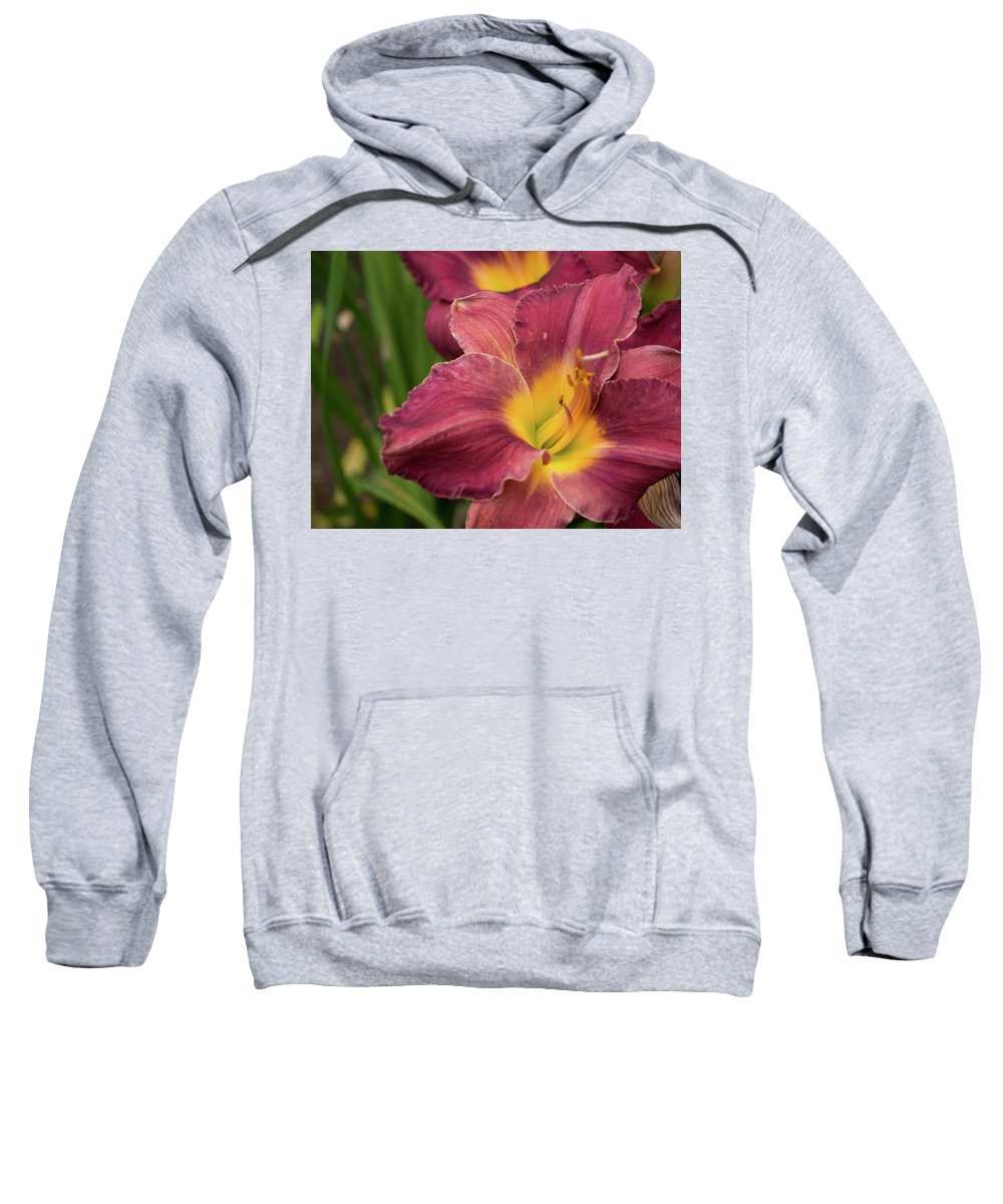 Flower Sweatshirt featuring the photograph Daylily 2 by Kathy Benham