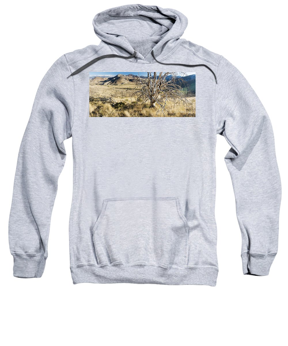 Western Scenes Sweatshirt featuring the photograph Dead Tree Panorama by Norman Andrus