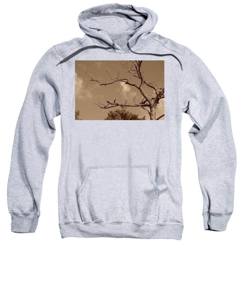 Sepia Sweatshirt featuring the photograph Dead Wood by Rob Hans