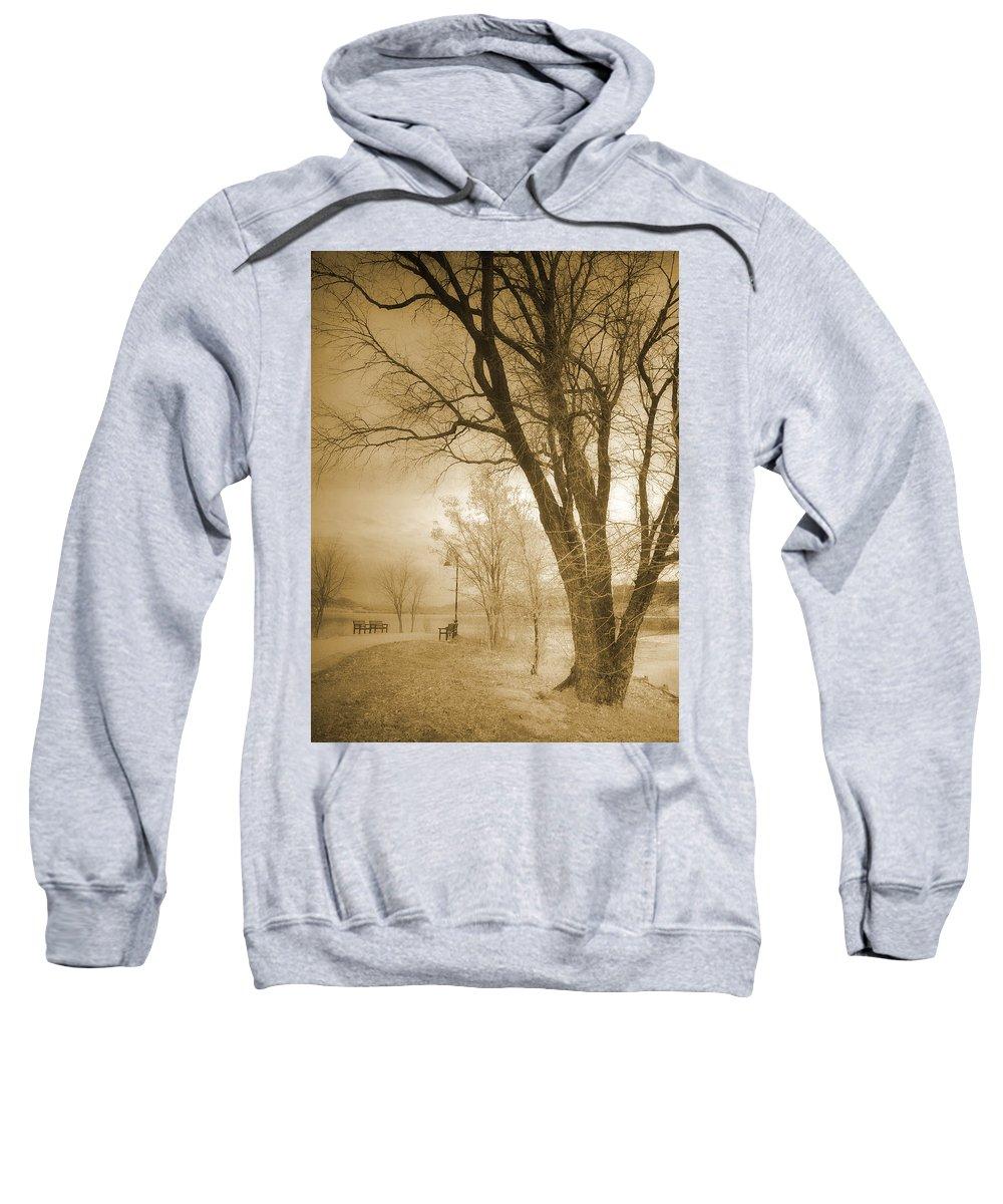 Trees Sweatshirt featuring the photograph December Glow by Tara Turner