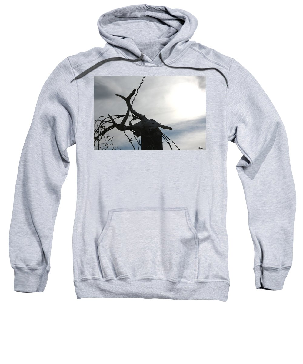 Deer Skull Barbwire Sky Clouds Death Life Horns Sweatshirt featuring the photograph Deer Skull In Wire by Andrea Lawrence