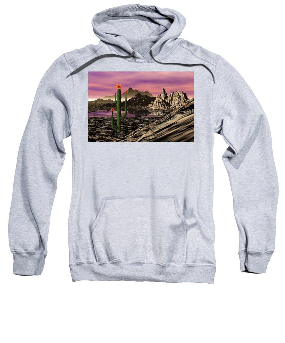 Digital Painting Sweatshirt featuring the digital art Desert Cartoon by David Lane