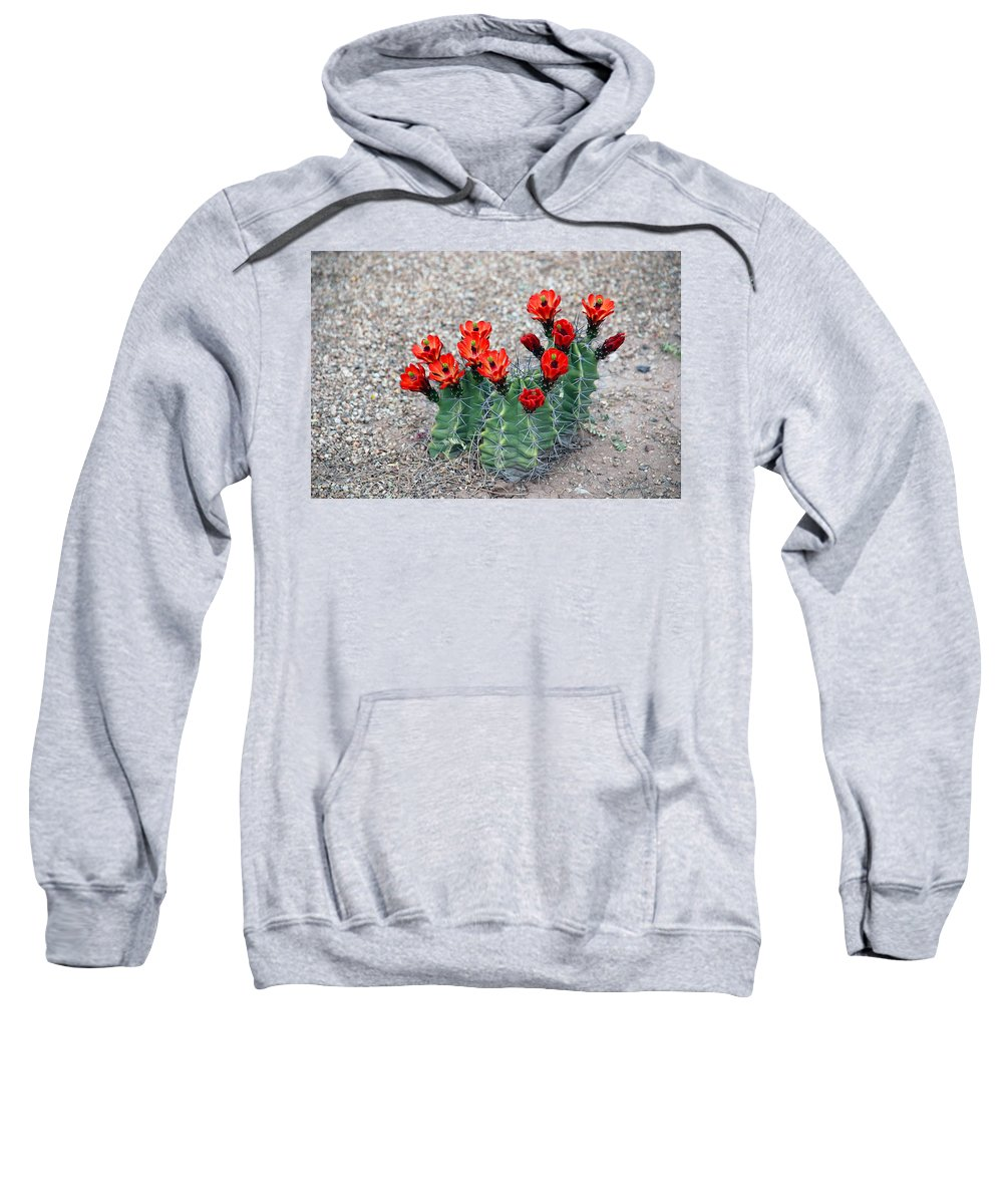 Desert Queen Sweatshirt featuring the photograph Desert Queen by Susanne Van Hulst
