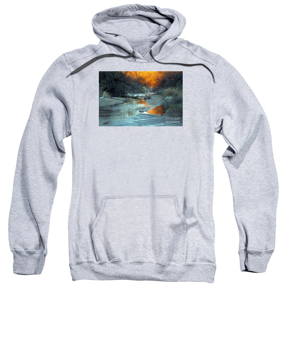 Saguaro National Park Sweatshirt featuring the photograph Desert Reflections by Jerry Bokowski