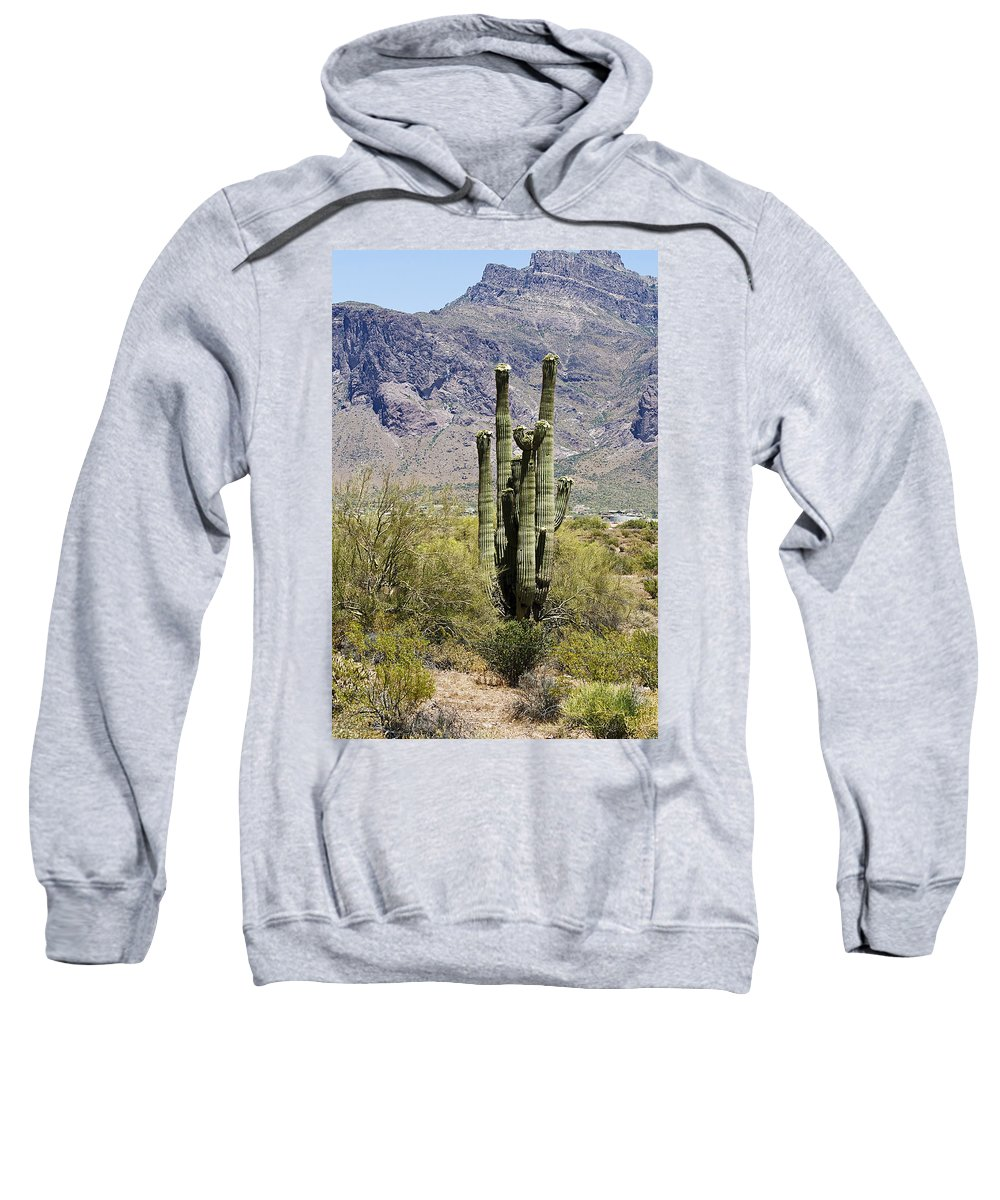 Desert Sweatshirt featuring the photograph Desert Strength by Phyllis Denton