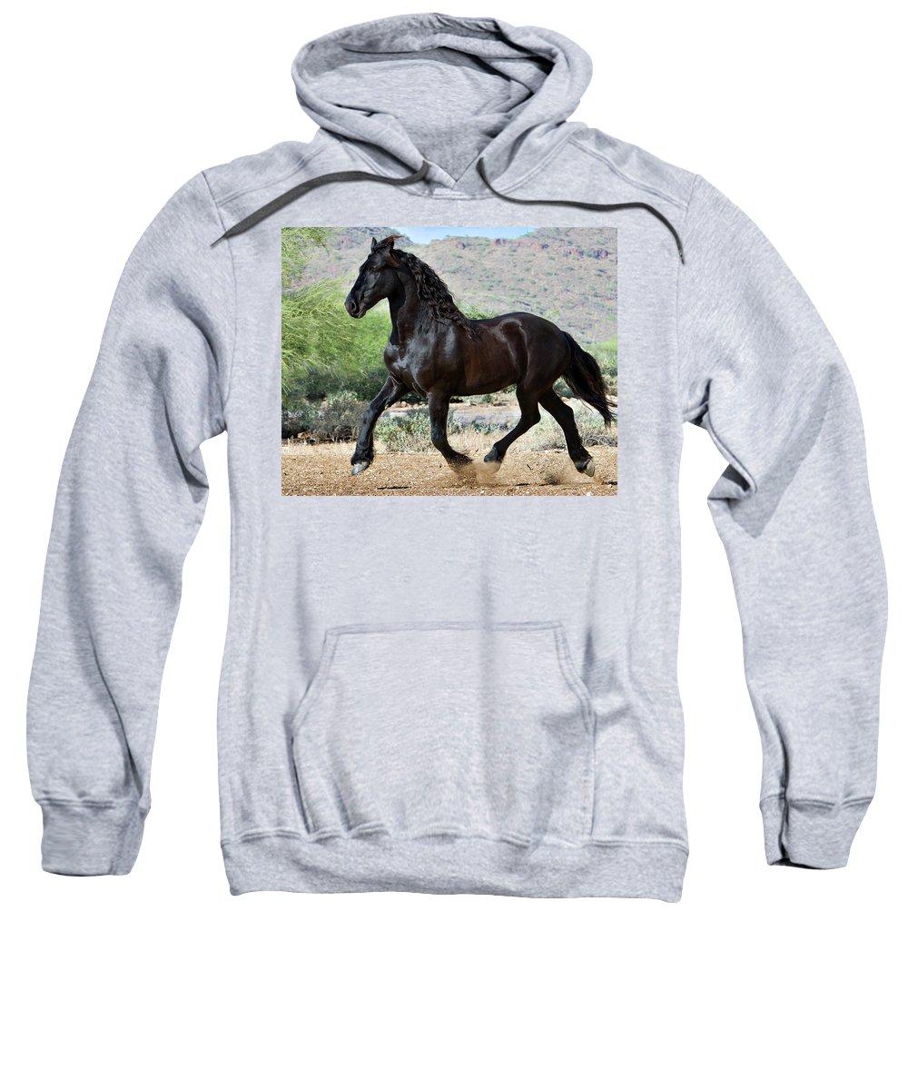 Horse Sweatshirt featuring the photograph Desert Wind by Jean Hildebrant