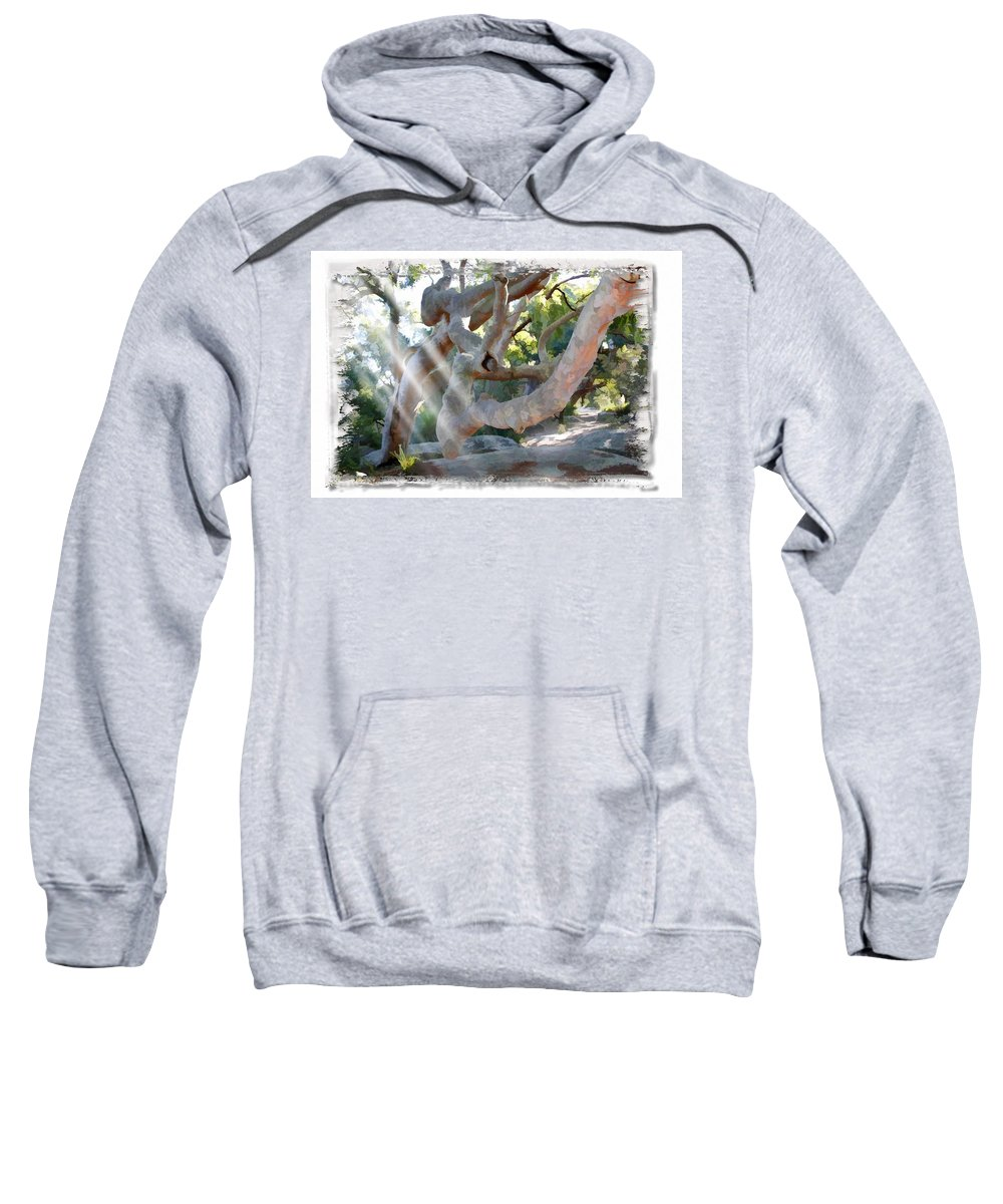 Trees Sweatshirt featuring the photograph Do-00044 Mount Ettalong by Digital Oil