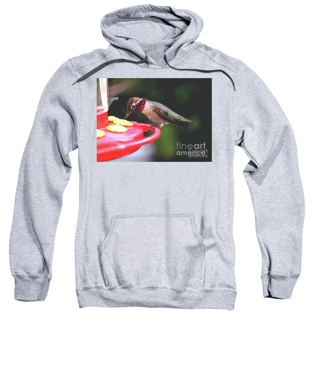 Male Sweatshirt featuring the photograph Do You Like My Snood by Jay Milo