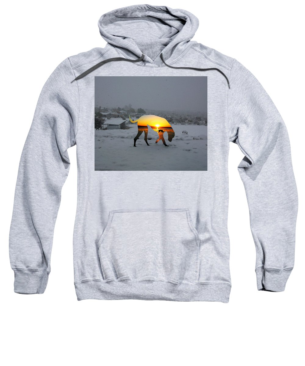 Landscape Sweatshirt featuring the photograph Dog Day Afternoon by Snake Jagger