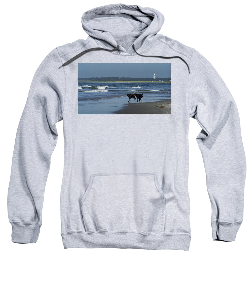 Dog Sweatshirt featuring the photograph Dogs On The Beach by Teresa Mucha