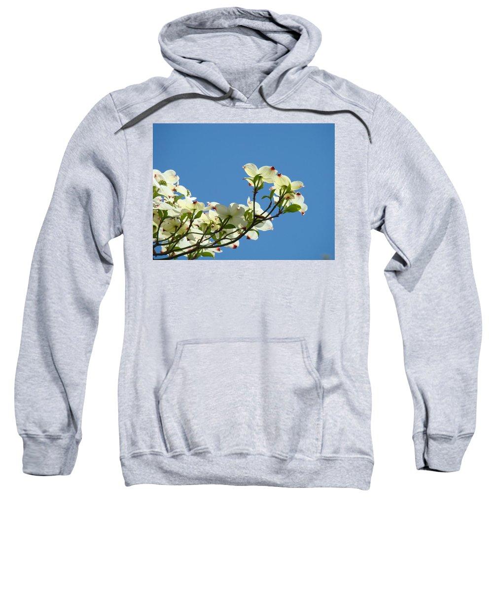 Dogwood Sweatshirt featuring the photograph Dogwood Flowers Art Prints White Flowering Dogwood Tree Baslee Troutman by Baslee Troutman