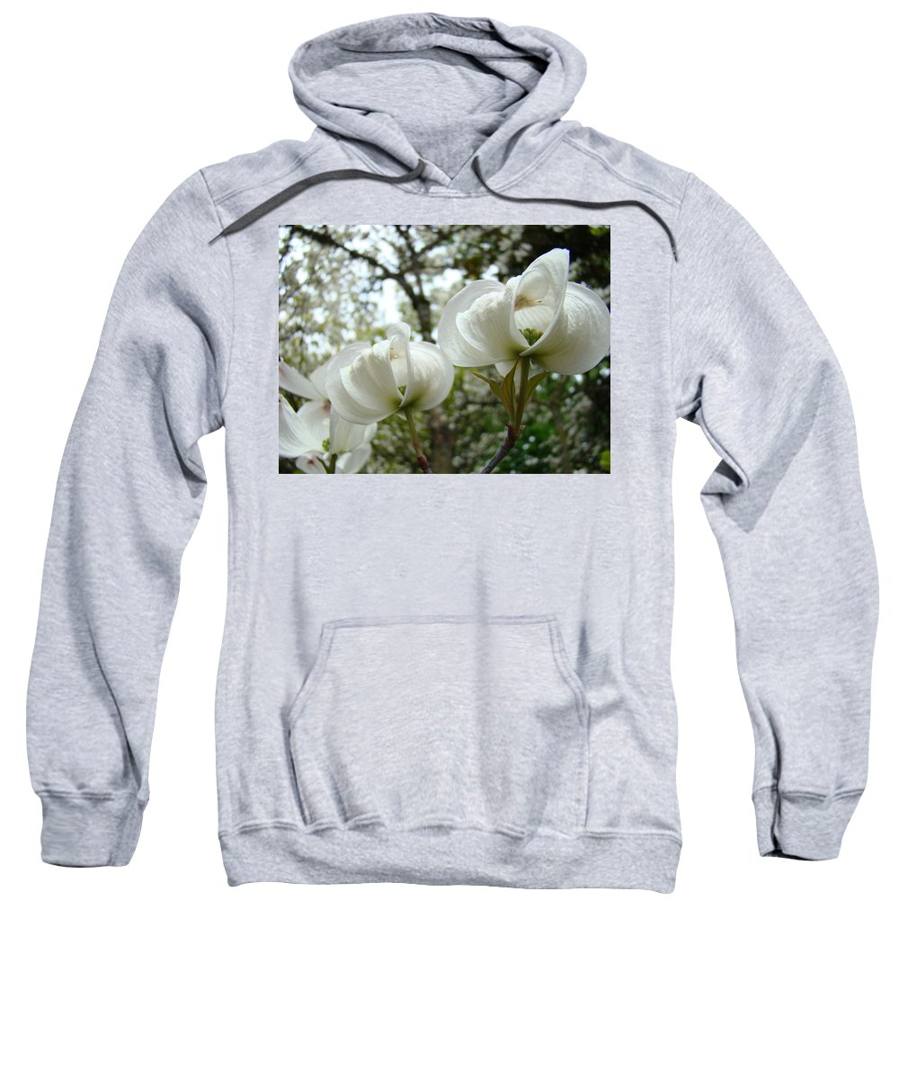 Dogwood Sweatshirt featuring the photograph Dogwood Flowers White Dogwood Trees Blossoming 8 Art Prints Baslee Troutman by Baslee Troutman