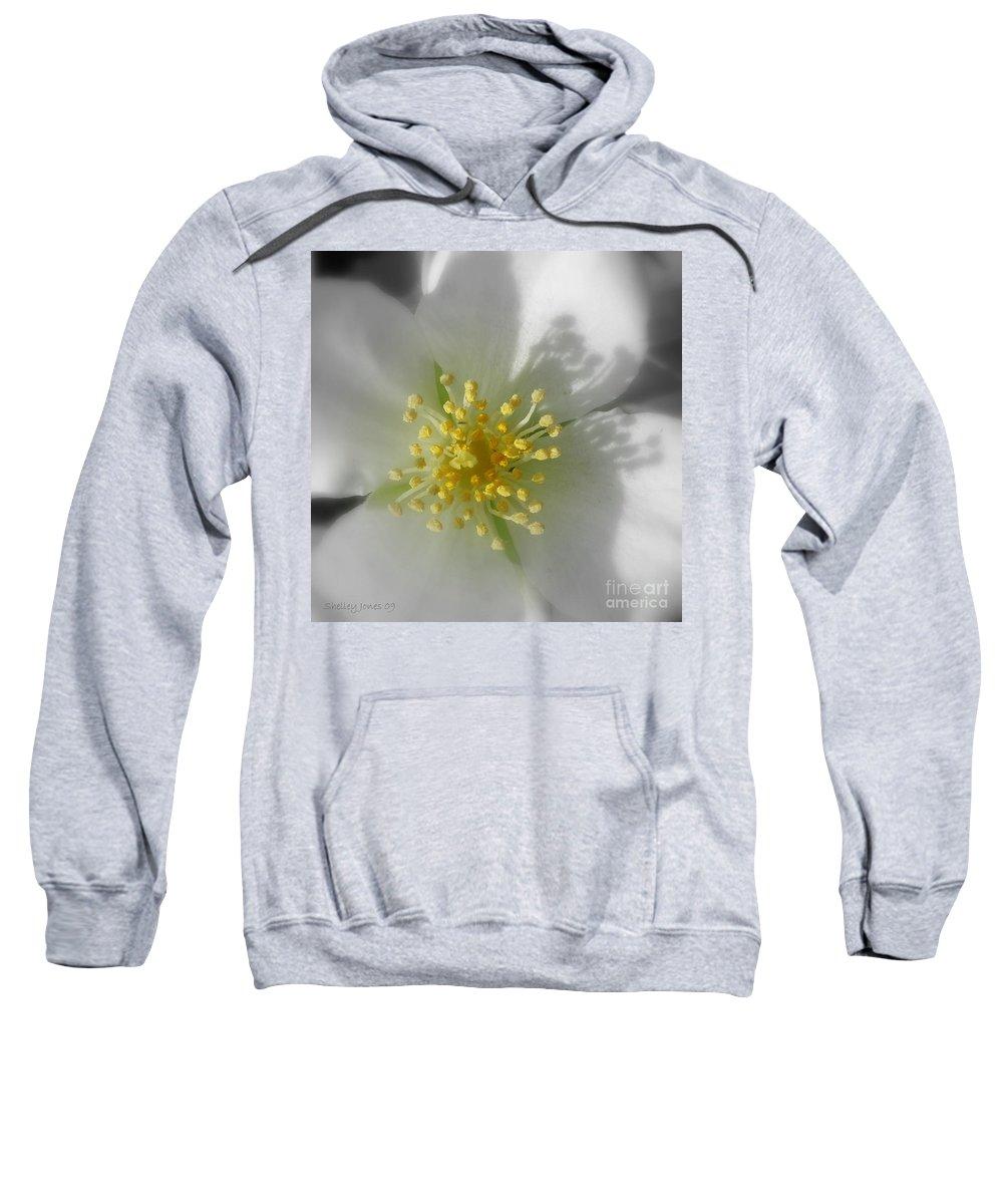 Photography Sweatshirt featuring the photograph Dogwood by Shelley Jones