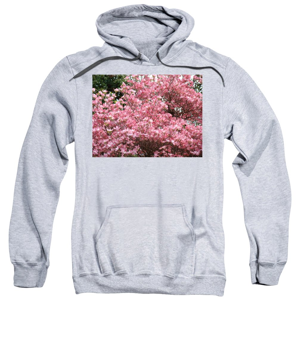 Dogwood Sweatshirt featuring the photograph Dogwood Tree Flowers Art Prints Canvas Pink Dogwood by Baslee Troutman