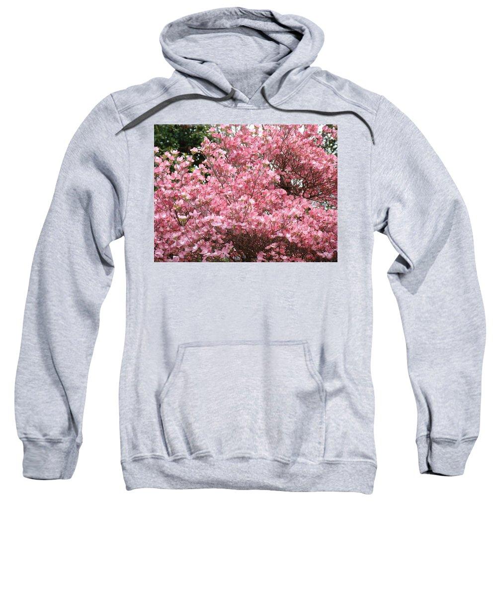 Dogwood Sweatshirt featuring the photograph Dogwood Tree Flowers Art Prints Canvas Pink Dogwood by Baslee Troutman