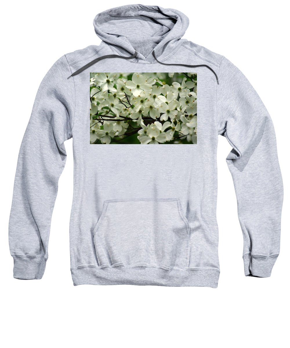 Dogwood Sweatshirt featuring the photograph Dogwoods by Marty Koch