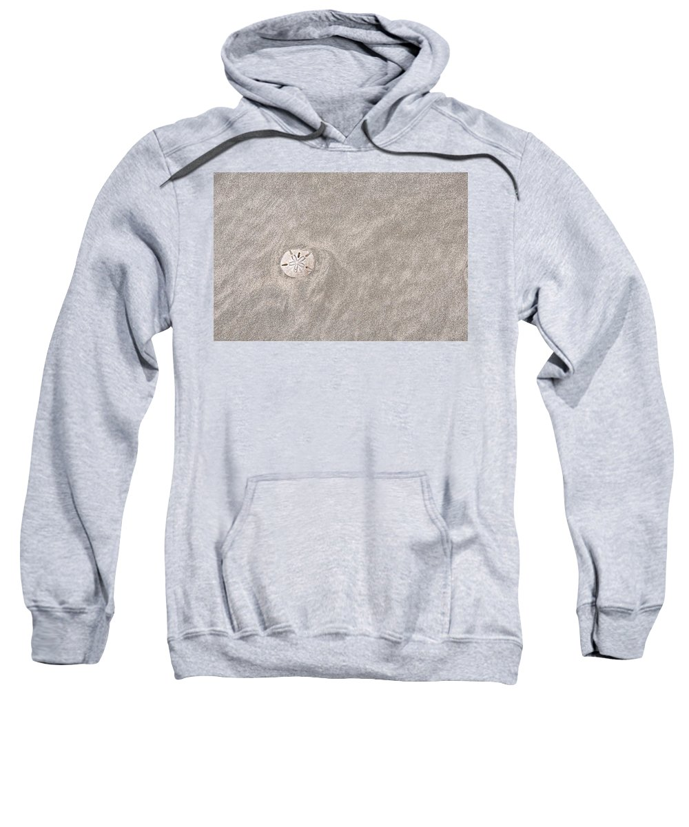 Sand Sweatshirt featuring the photograph Dollar In The Sand by David Arment