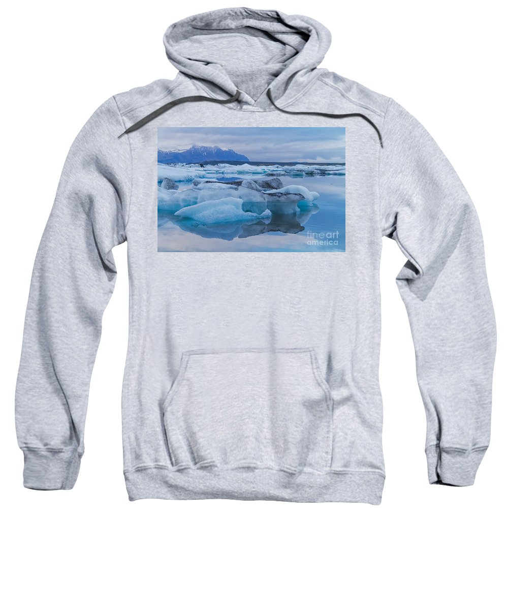Jokulsarlon Sweatshirt featuring the photograph Dolphin Nose by Martine DF