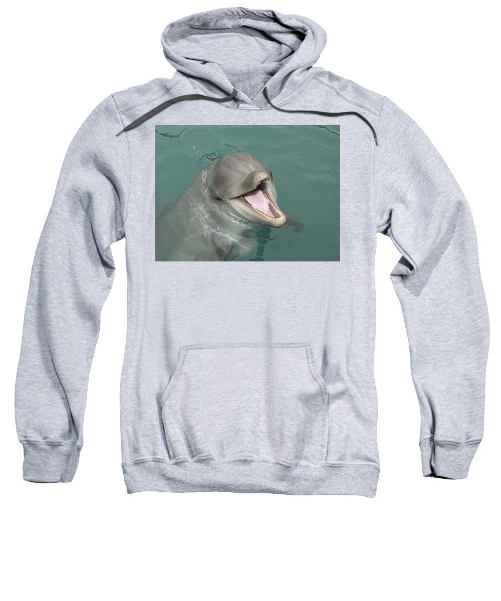 Dolphin Sweatshirt featuring the painting Dolphin by Sean M