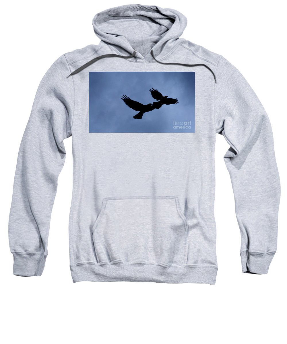 Birds Sweatshirt featuring the photograph Double Silhouette by Lori Tambakis
