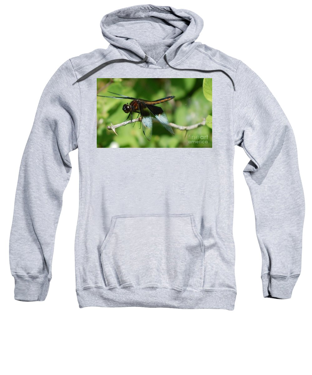 Digitall Photo Sweatshirt featuring the photograph Dragon Fly by David Lane