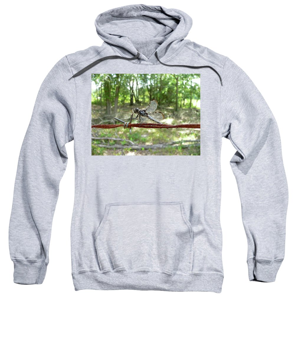 Dragonfly Sweatshirt featuring the photograph Dragonfly On Barbed Wire by Al Powell Photography USA