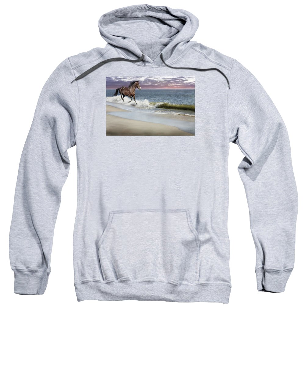 Landscape Sweatshirt featuring the photograph Dreamer On The Beach by Barbara Hymer