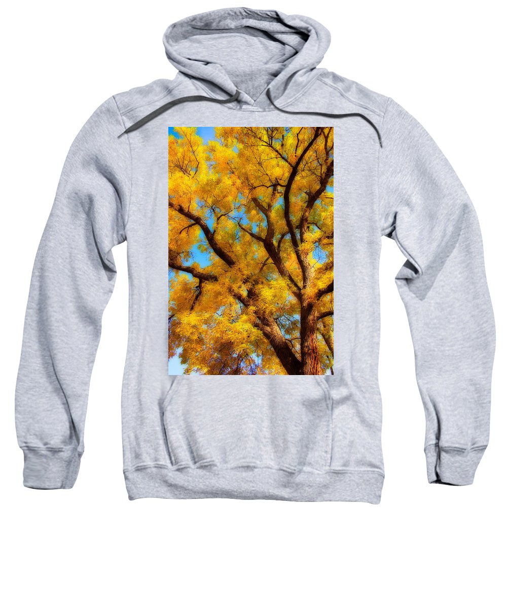 Giant Sweatshirt featuring the photograph Dreamy Crisp Autumn Day by James BO Insogna