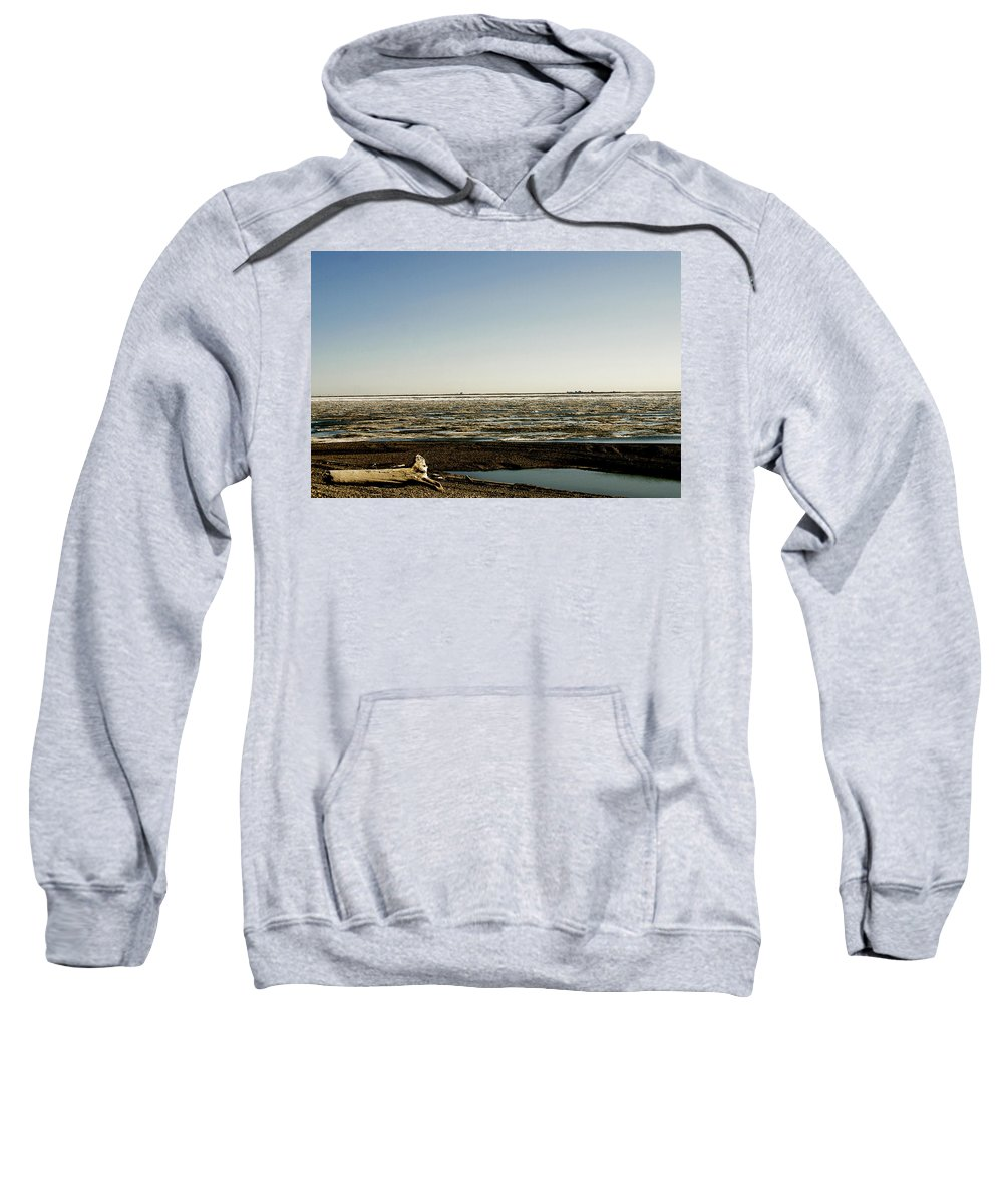 Driftwood Sweatshirt featuring the photograph Driftwood On Arctic Beach by Anthony Jones