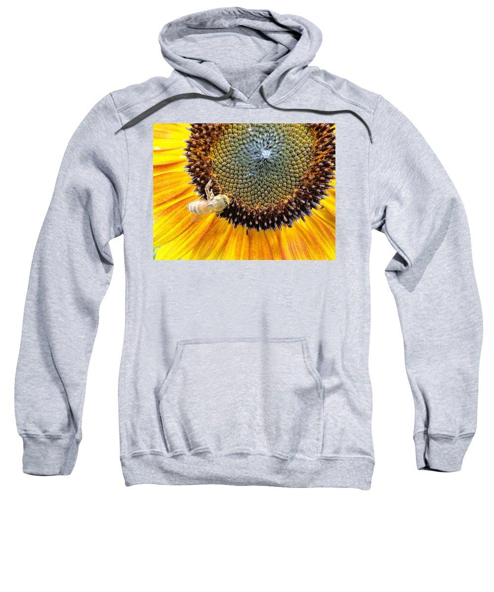 Sunfllower Sweatshirt featuring the photograph Drunken Bee by Trish Hale