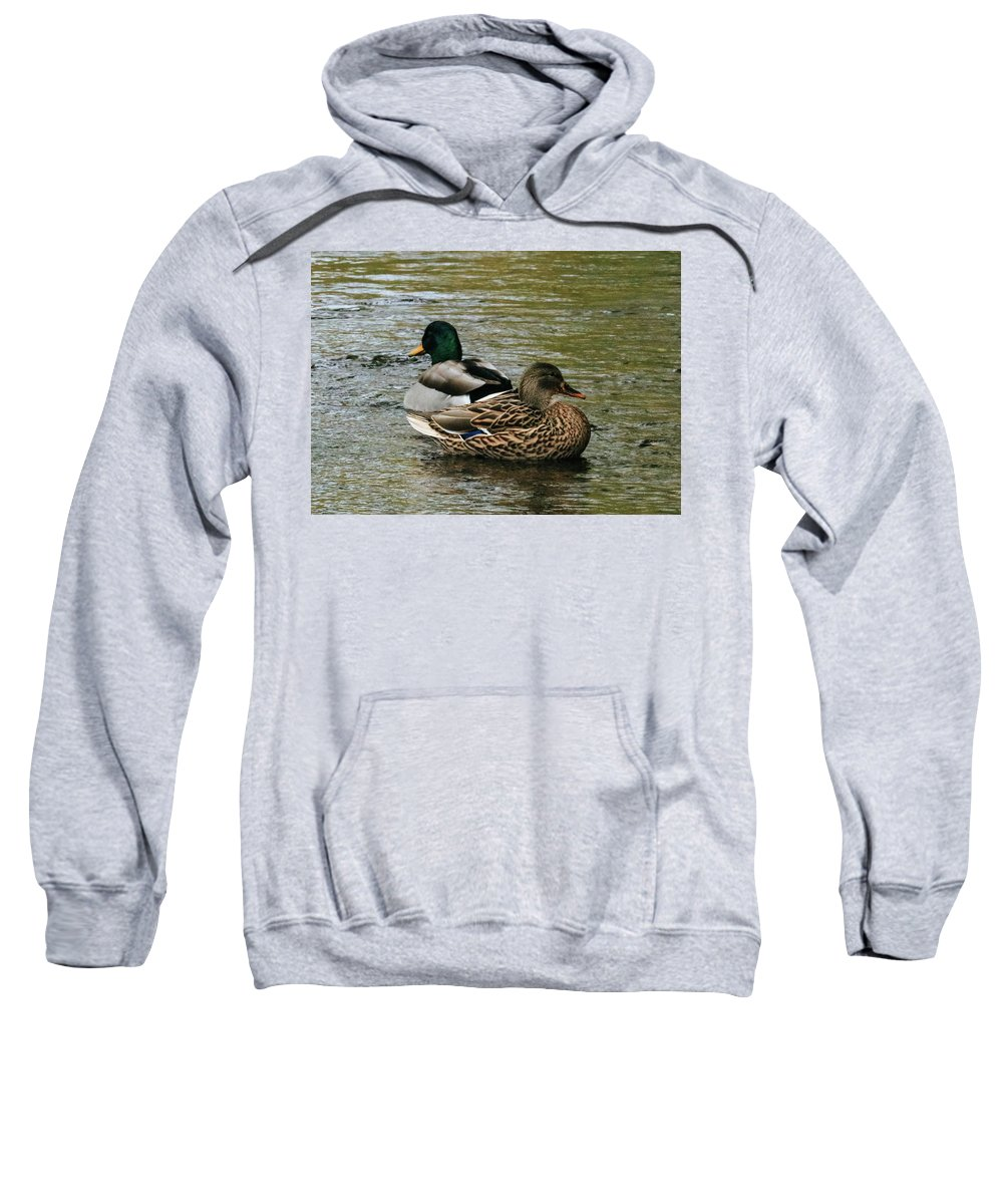 Ducks Sweatshirt featuring the photograph Ducks 1 by Calyse Knox