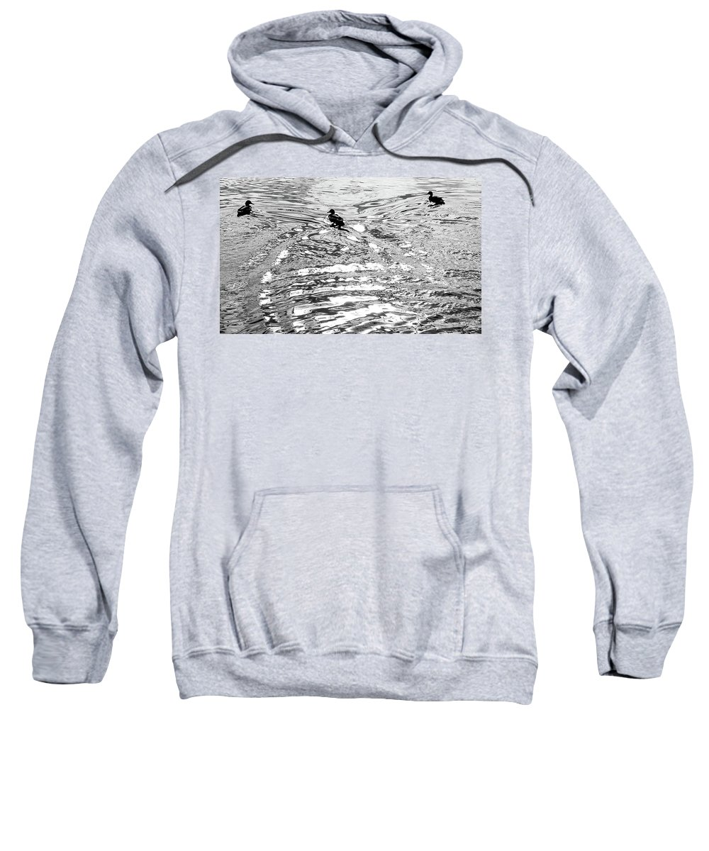 Black And White Sweatshirt featuring the photograph Ducks Swirl by Vm Vassolo