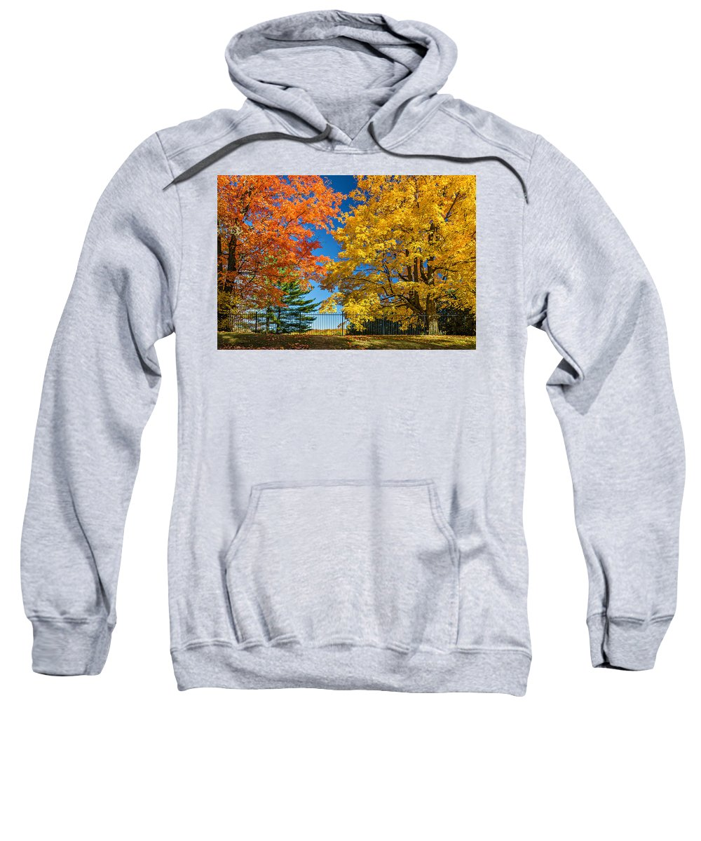Maples Sweatshirt featuring the photograph Dueling Maples by Steve Harrington