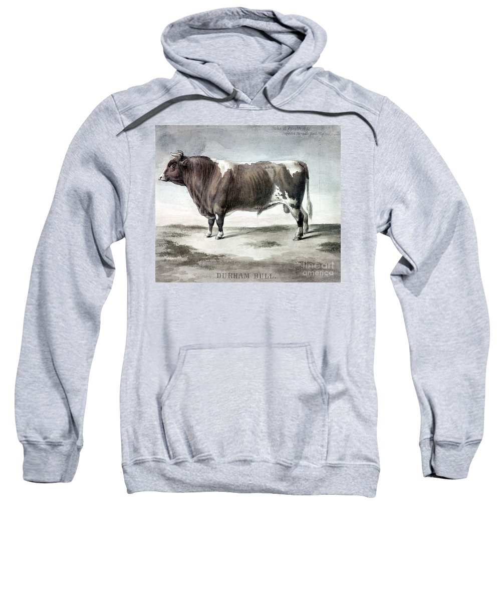 1856 Sweatshirt featuring the photograph Durham Bull, 1856 by Granger