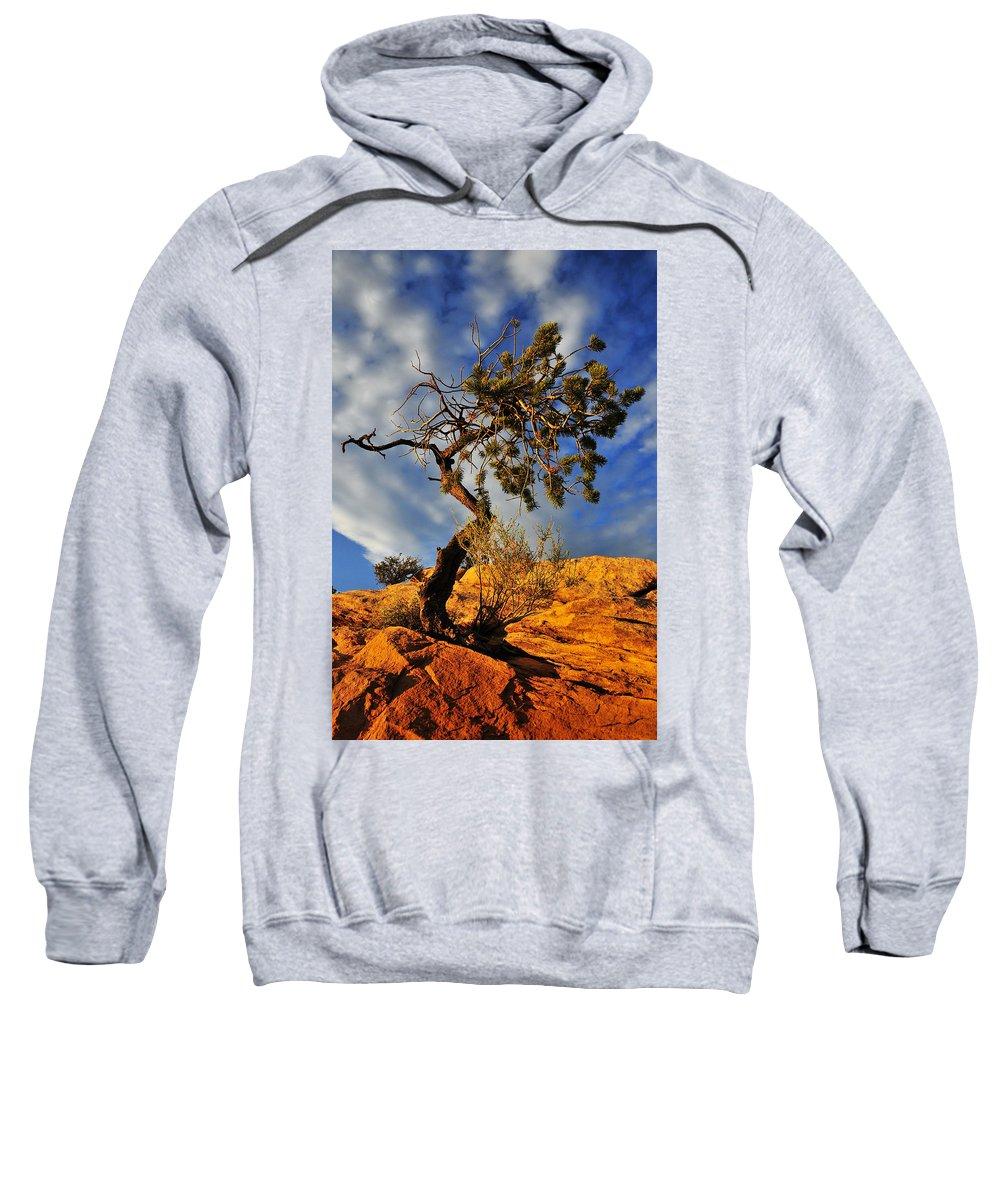Dusk Dance Sweatshirt featuring the photograph Dusk Dance by Skip Hunt