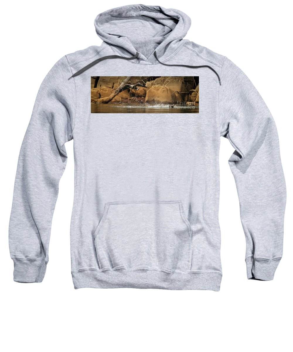 Juvenile Sweatshirt featuring the photograph Eagle Attack by Douglas Stucky