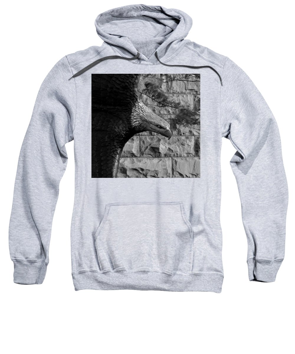 Sioux Falls Sweatshirt featuring the photograph Eagle Eye by Mike Oistad