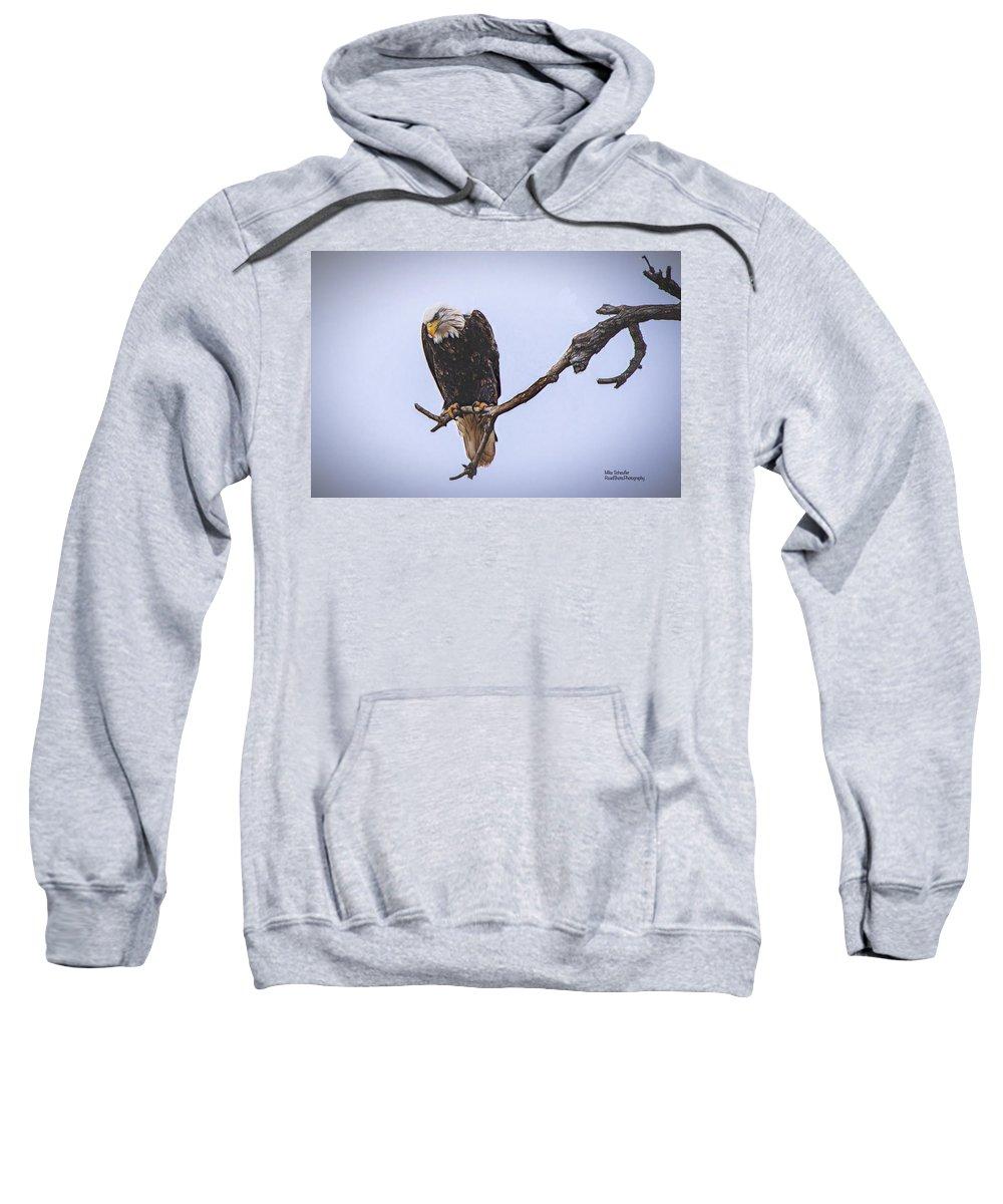 Eagle Sweatshirt featuring the digital art Eagle Searching by Mike Scheufler