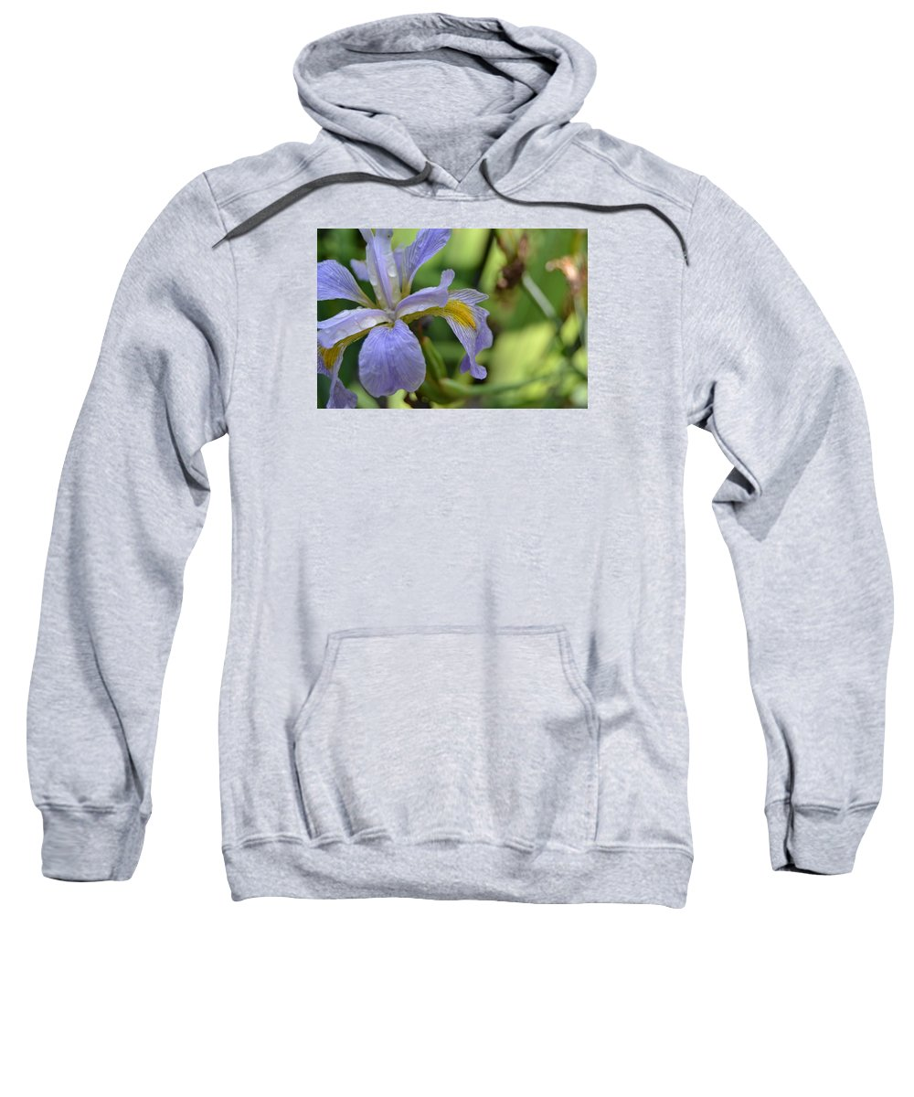 Flower Sweatshirt featuring the photograph Early Iris by Denise Jakob