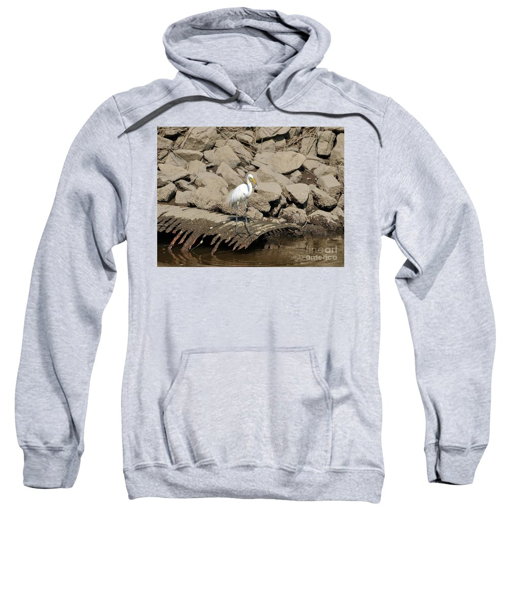 Great Egret Sweatshirt featuring the photograph Egret Fishing by Al Powell Photography USA