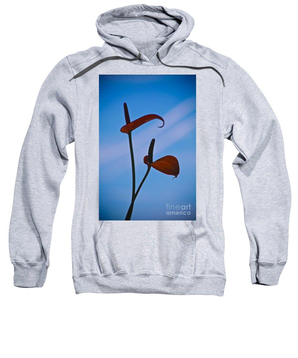 Arum Sweatshirt featuring the photograph Elegance-1 by Casper Cammeraat