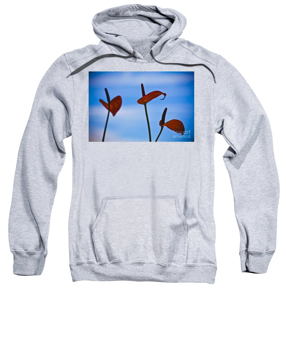 Three Sweatshirt featuring the photograph Elegance-2 by Casper Cammeraat