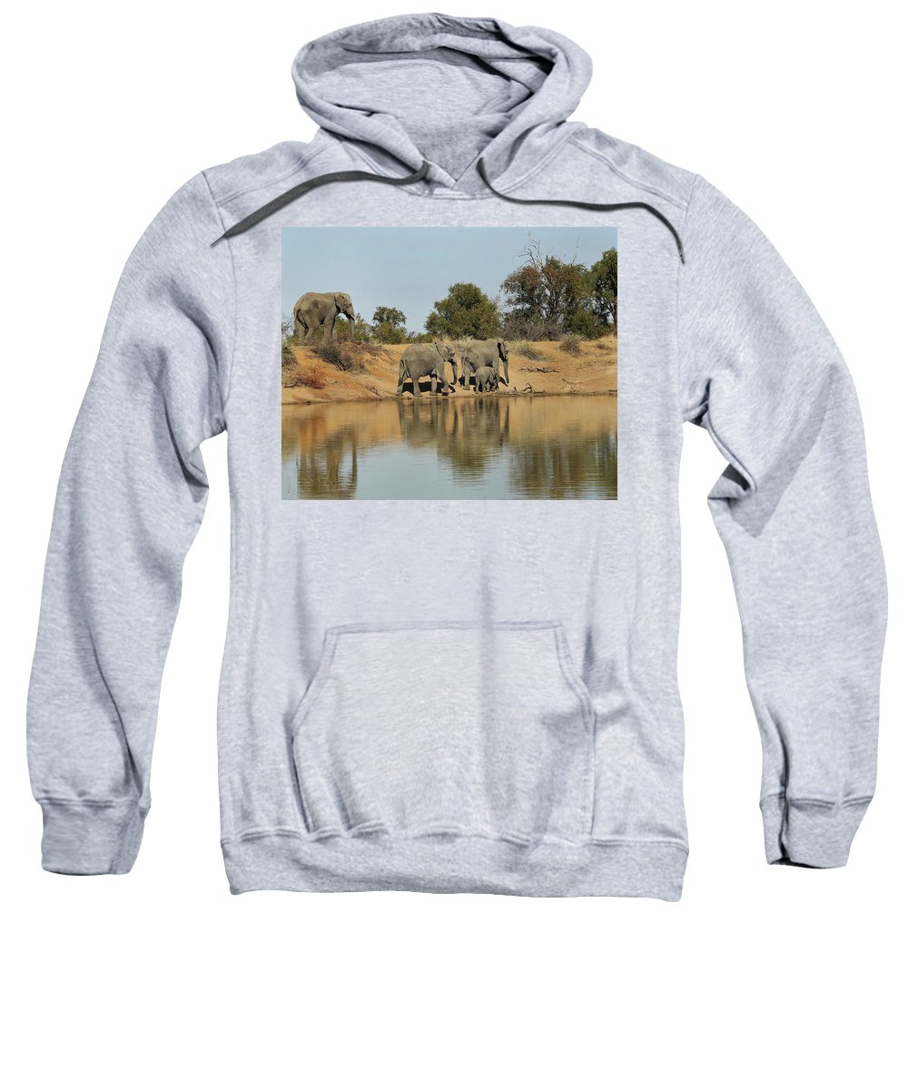 Elephant Sweatshirt featuring the photograph Elephant Refelction by Suzanne Morshead