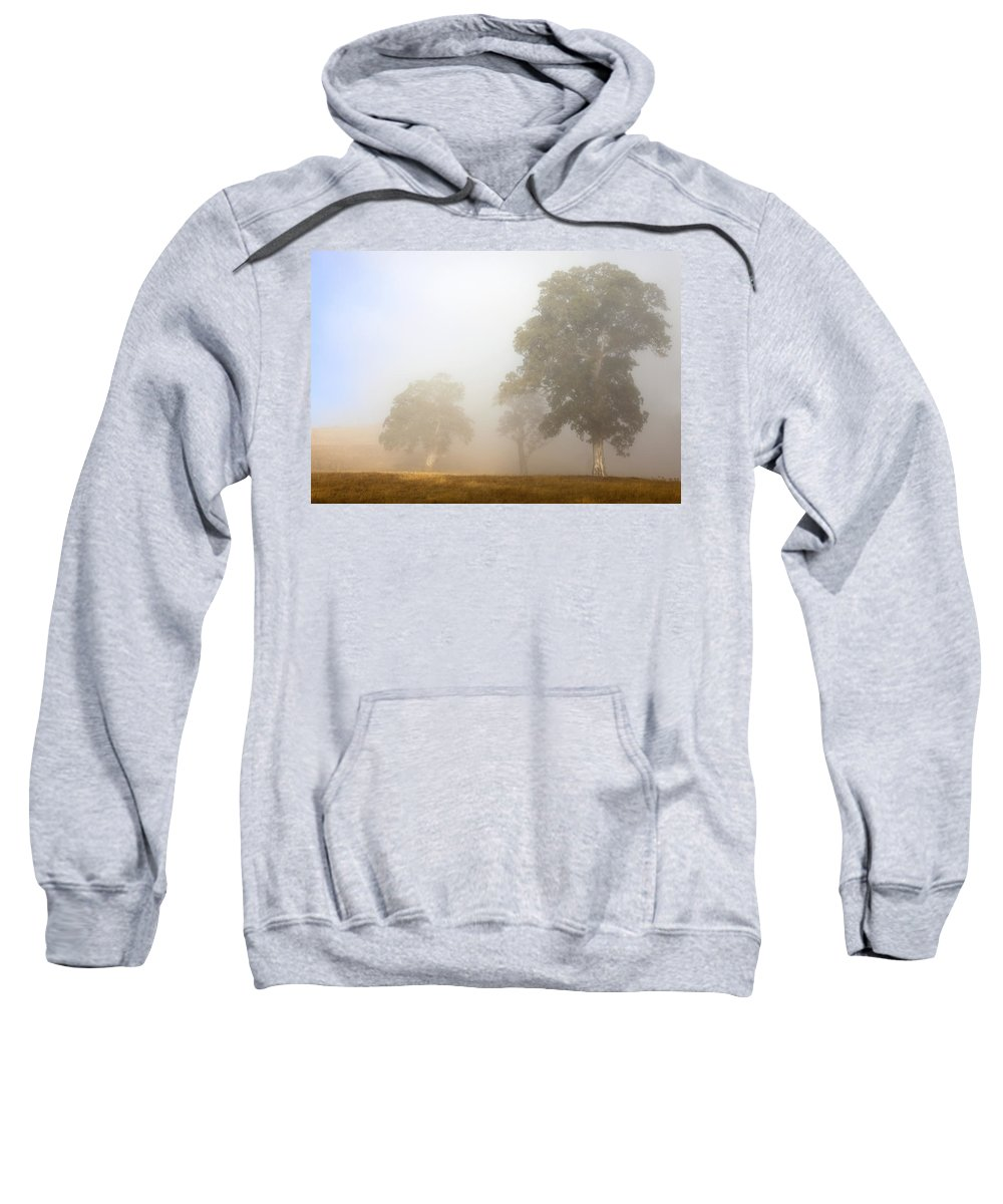 Gum Tree Sweatshirt featuring the photograph Emerging From The Fog by Mike Dawson