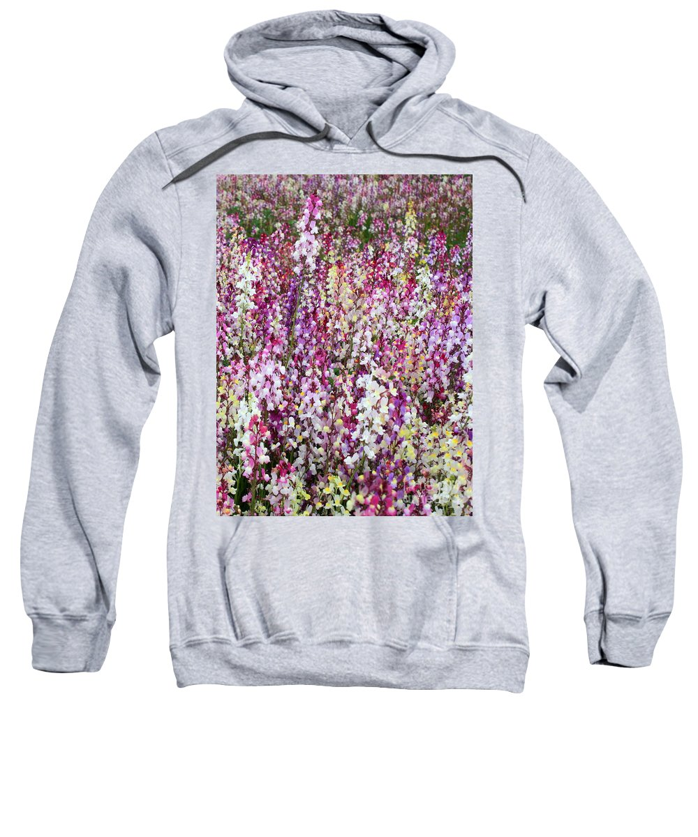 Colorful Flowers Sweatshirt featuring the photograph Endless Field Of Flowers by Carol Groenen