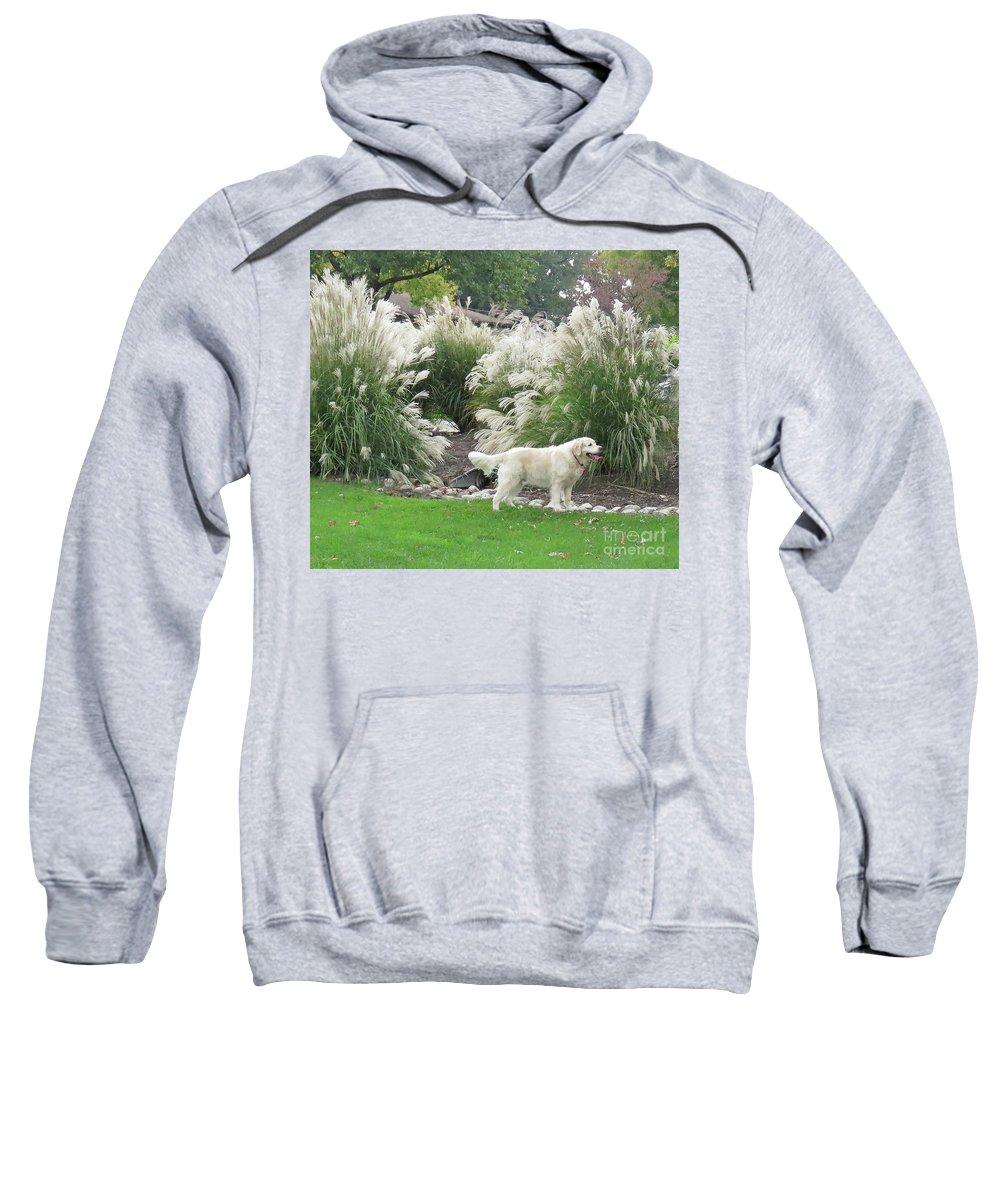 Dog Sweatshirt featuring the digital art English Retriever by Sharon Weiss