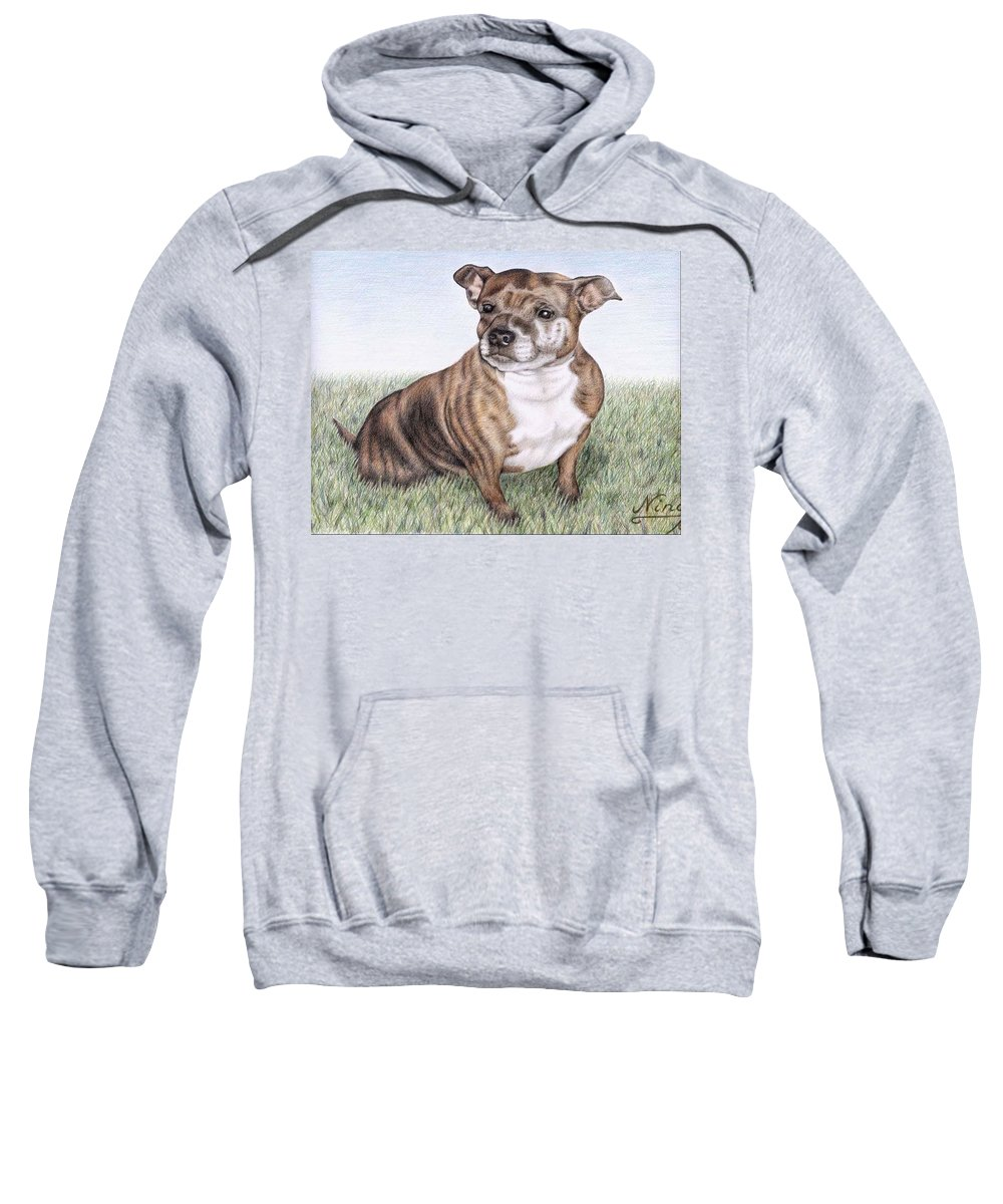Dog Sweatshirt featuring the drawing English Staffordshire Terrier by Nicole Zeug