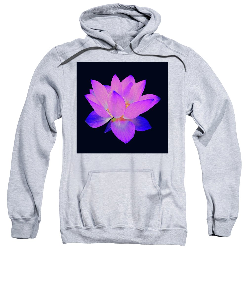 Lotus Sweatshirt featuring the painting Evening Purple Lotus by David Dehner
